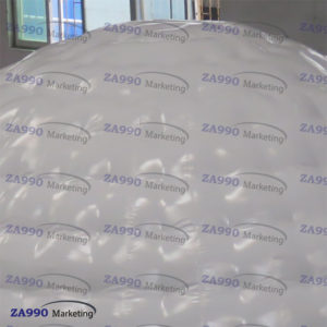 26ft White Inflatable Igloo Dome With Air Blower